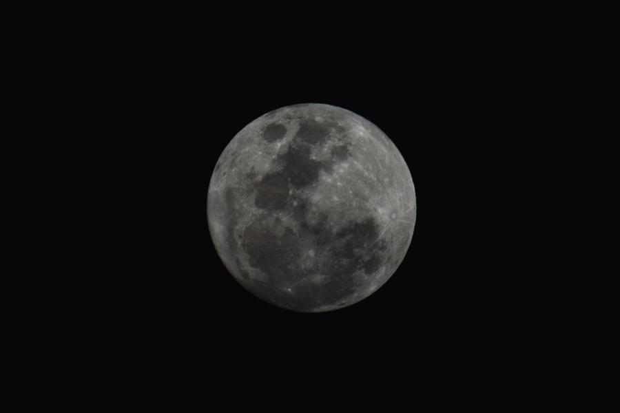 Луна в 10 доме у женщины