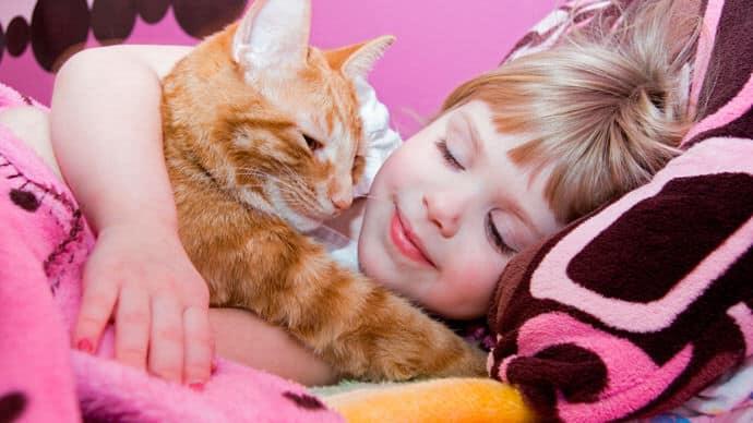 ребёнок спит с котом