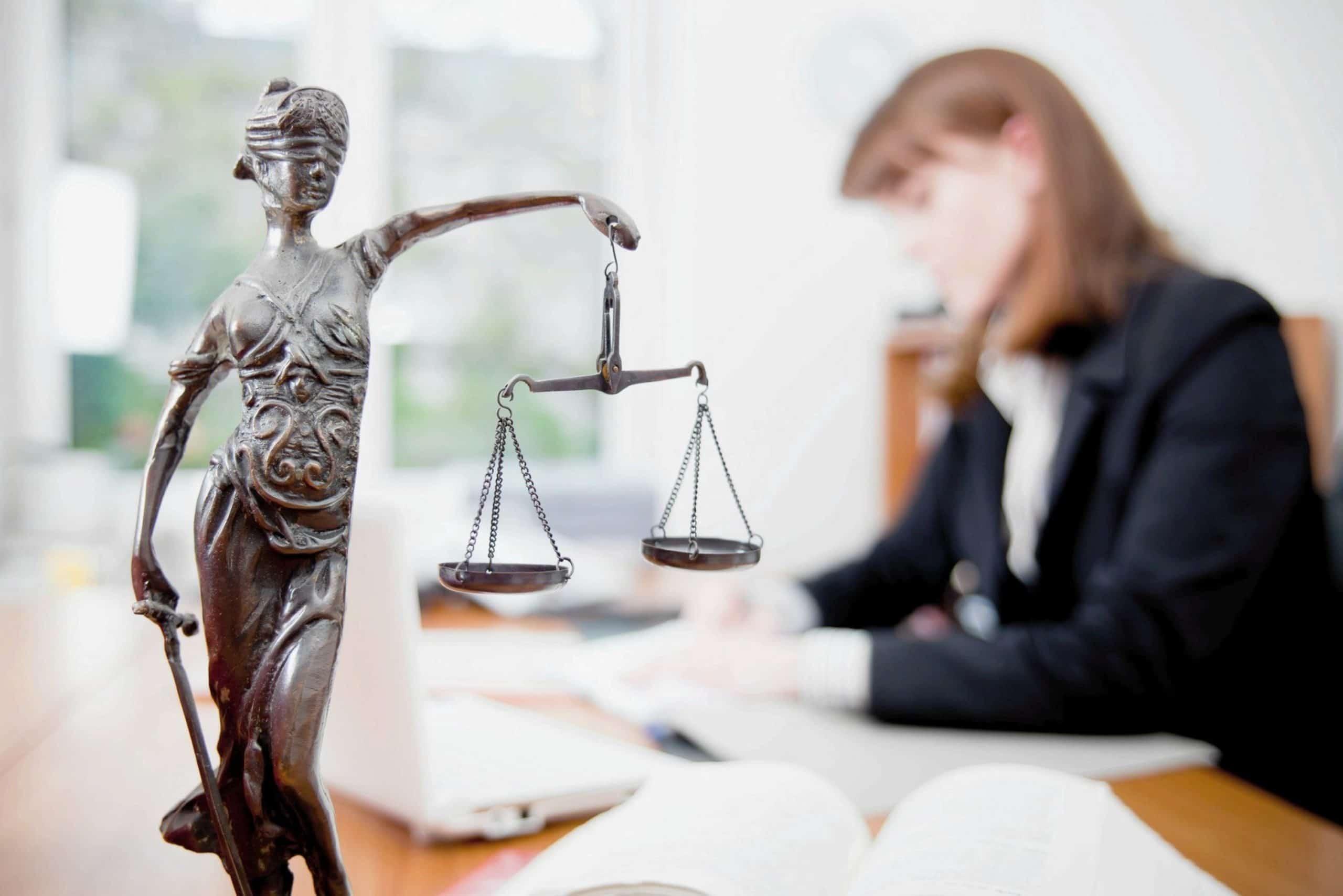 им подходит юриспруденция