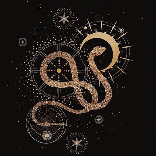лунные узлы - хвост и голова змея