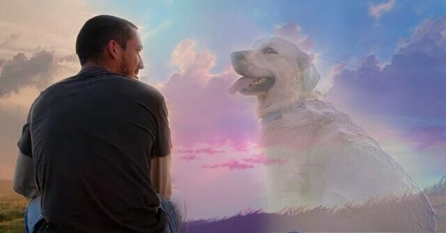душа собаки после смерти